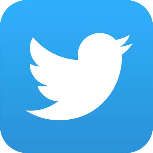 WordPressとTwitterを連携するプラグイン「Tweetable」でTwitterへ書き込めない場合の対処法